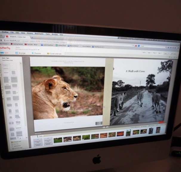 Walking with Lions: My Time in Zambia