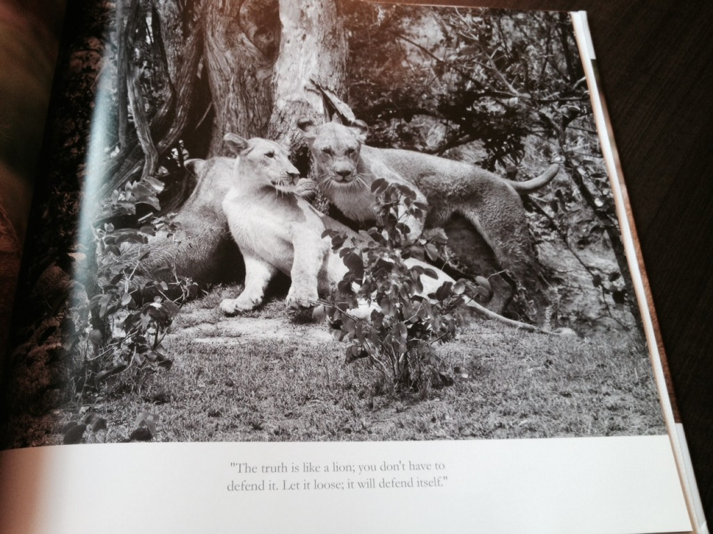 World Lion Day Photo Book