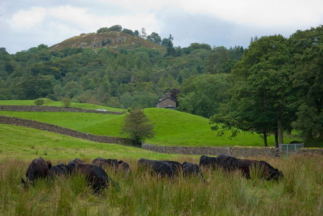 How to weekend in the lake district